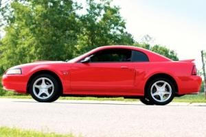 2000 Ford Mustang GT Spring Edition