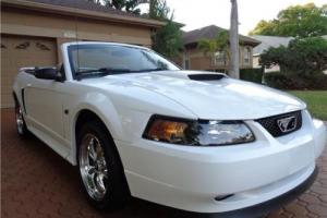 2002 Ford Mustang GT Premium/LEATHER POWER SEAT CHROME WHEELS MP3 XM