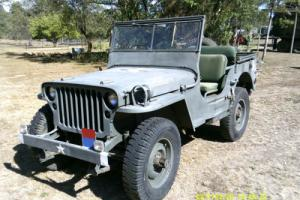 JEEP - WILLYS JEEP Photo