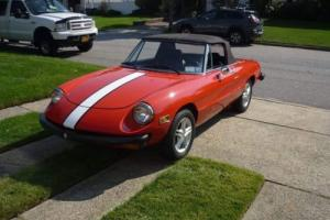 1978 Alfa Romeo Spider Spider Photo