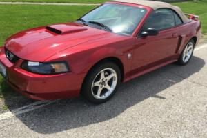 2004 Ford Mustang GT