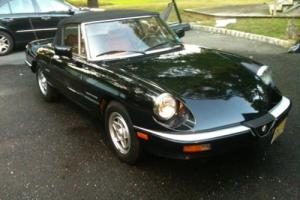 1988 Alfa Romeo Spider Pininfarina Photo