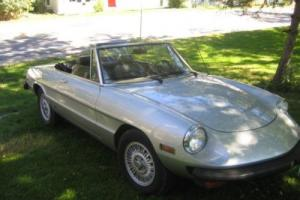 1977 Alfa Romeo Spider Photo