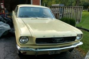 1966 Ford Mustang 2 dr Coupe