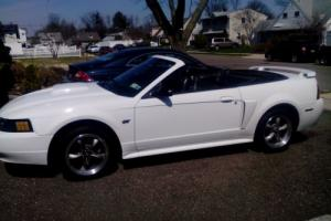 2001 Ford Mustang 4 pass specialty