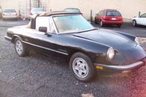 1986 Alfa Romeo Spider Graduate Photo