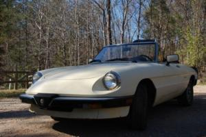 1988 Alfa Romeo Spider Photo