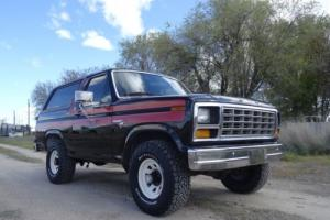 1981 Ford Bronco Free Wheelin