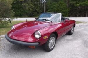 1979 Alfa Romeo Other Photo