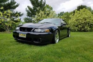 2004 Ford Mustang Terminator