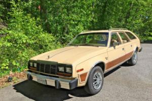 1982 AMC Concord DL Station Wagon Photo