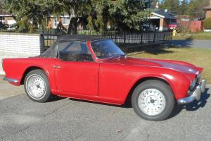 Triumph: TR4 convertible Photo