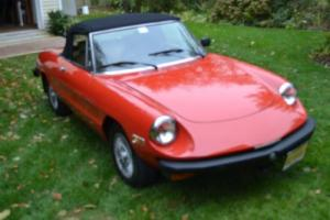 1979 Alfa Romeo Spider Photo