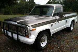 1981 Jeep J10 Pickup Photo