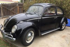 1963 Volkswagen Beetle - Classic Beetle with sunroof Photo