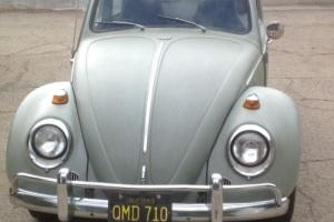 1961 Volkswagen Beetle-New -- Photo