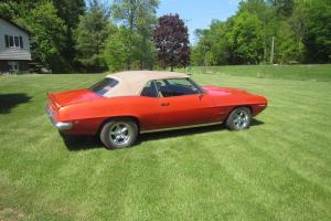 Pontiac: Firebird Leather Photo