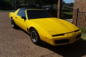 1982 Trans am Firebird