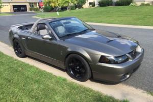 2003 Ford Mustang Cobra for Sale