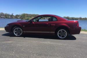 2004 Ford Mustang Anniversary Addition