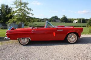 1956 Ford Thunderbird Photo