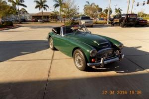 1967 Austin Healey 3000 BJ8 Photo