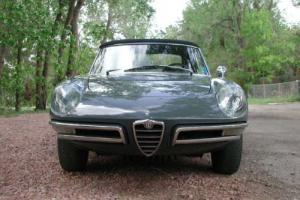 1967 Alfa Romeo Duetto 1600 -- Photo