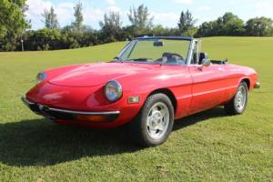 1971 Alfa Romeo Spider Photo