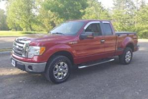 2009 Ford F-150 XLT Photo