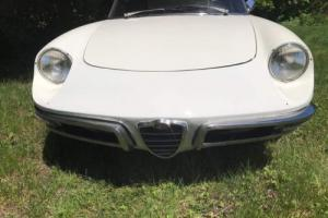 1967 Alfa Romeo Spider Photo