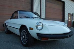 1977 Alfa Romeo Spider Project car, needs love,has many postive atributes