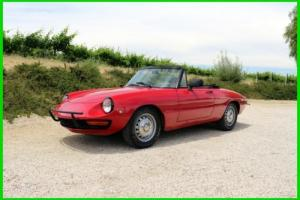 1969 Alfa Romeo Spider Photo