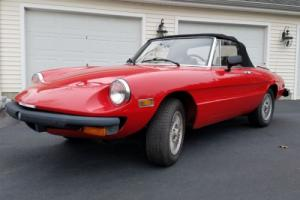 1980 Alfa Romeo Spider Convertible Photo