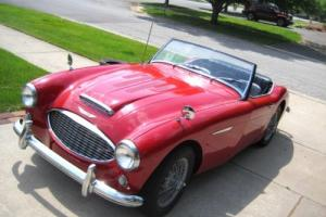 1958 Austin Healey Roadster Photo