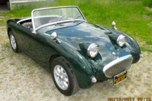 Austin Healey: Sprite BUGEYE SPRITE Photo