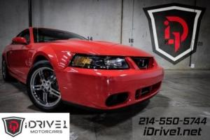 2003 Ford Mustang SVT Cobra 10th Anniverary Edition Terminator