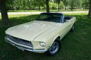 1968 Ford Mustang J-CODE Photo