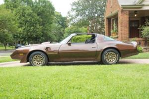 1979 Pontiac Trans Am Firebird Photo