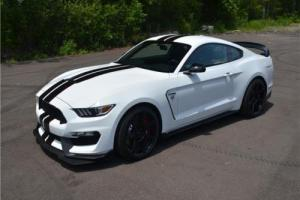 2017 Ford Mustang Shelby GT350-R All accessories and delivery extras