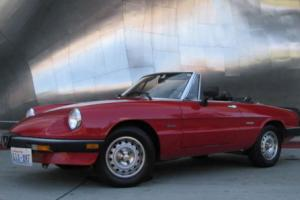 1985 Alfa Romeo Spider Photo