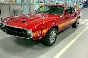 1969 Shelby Shelby GT500 Photo