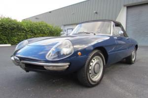 1968 Alfa Romeo Duetto Convertible Photo