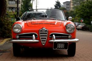 1965 Alfa Romeo Giulia Photo