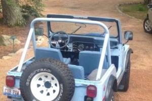 1979 Jeep CJ Levi Straus Photo