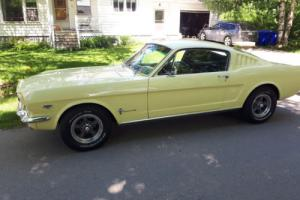 Ford: Mustang 289 2+2 Photo