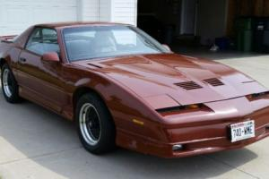1989 Pontiac Firebird Photo