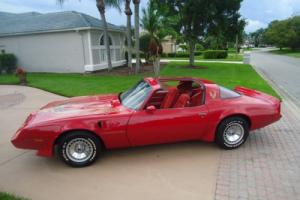 1981 Pontiac Trans Am TURBO Photo