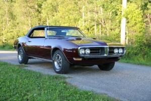 1968 Pontiac Firebird Photo