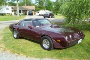 Pontiac: Trans Am Firebird Photo