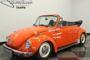 1973 Volkswagen Super Beetle Photo